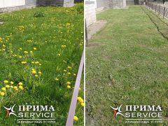 Прима Сервис покос травы